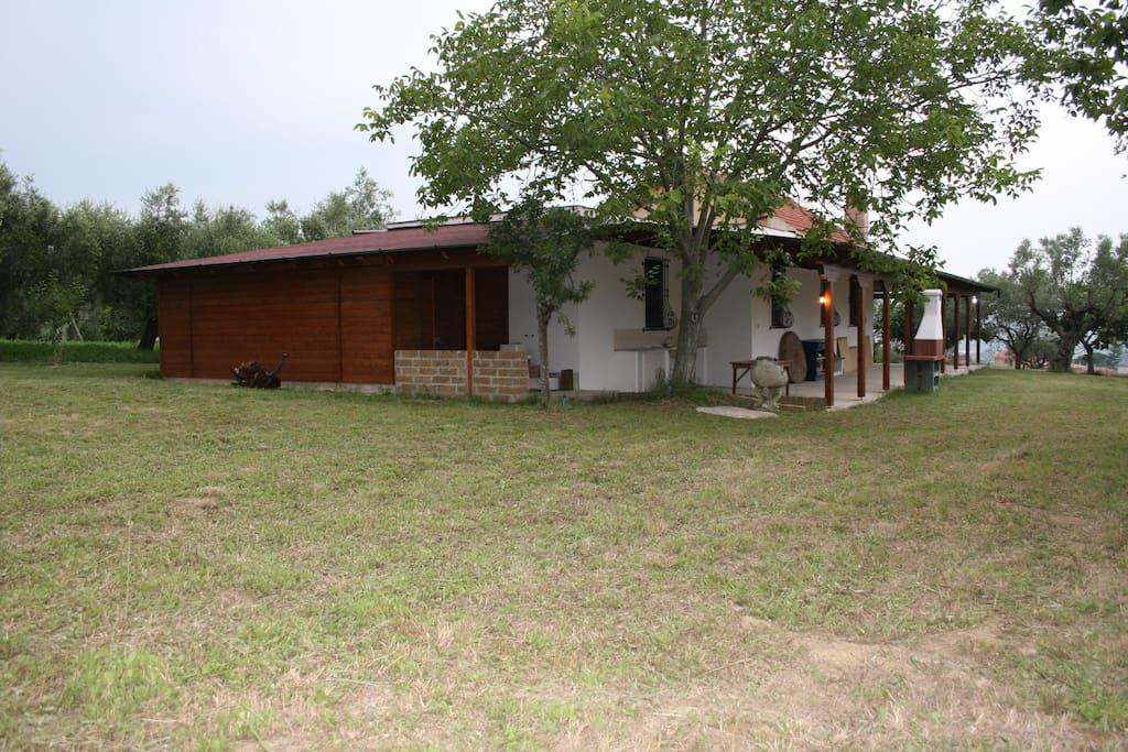 Villino piano terra con rimessa agricola in legno