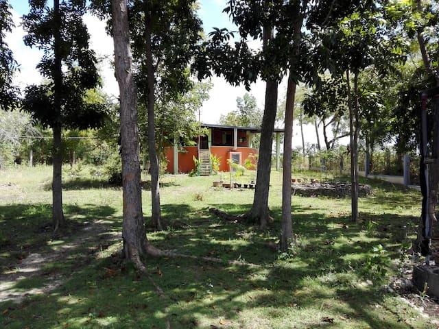 Gästehaus im Mango Park - Moalboal - Chambres d'hôtes