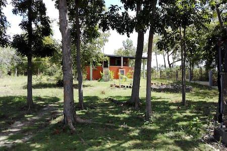 Gästehaus im Mango Park - Moalboal - 旅舍