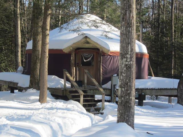 magical yurt in the woods - Williamsburg - Tenda