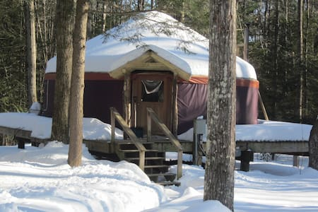 magical yurt in the woods - Williamsburg - Yurt