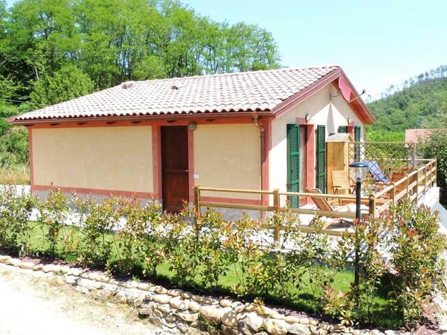 Villa Livia le vert. (N. CITRA 0110033-LT-0039)
