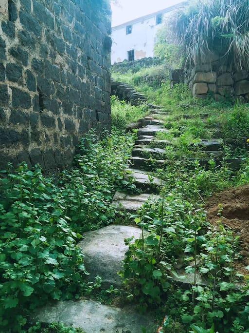 屋后的山间小路,百年的磨练变得圆润光洁如玉
