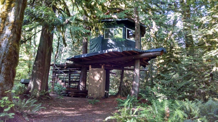 The Eagle's Perch -- A Tree-House Experience