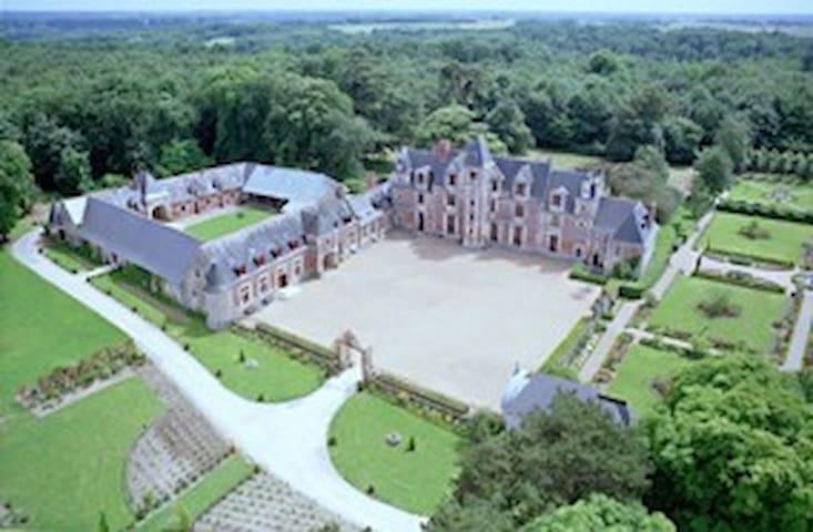 Gite 400M² château Jallanges (15 P) -2 SPAS privés