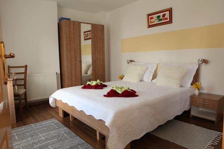 Guesthouse Samolov Room 1 ***