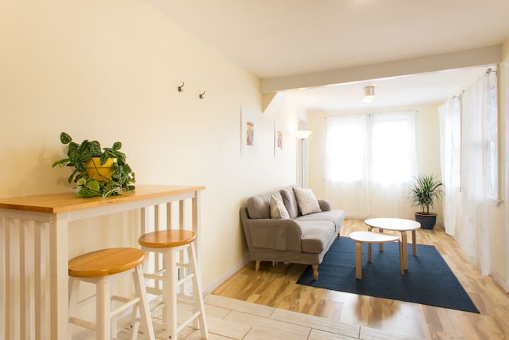 Spacious, Comfortable 2 Bedroom Apt Near South End - Boston - Wohnung