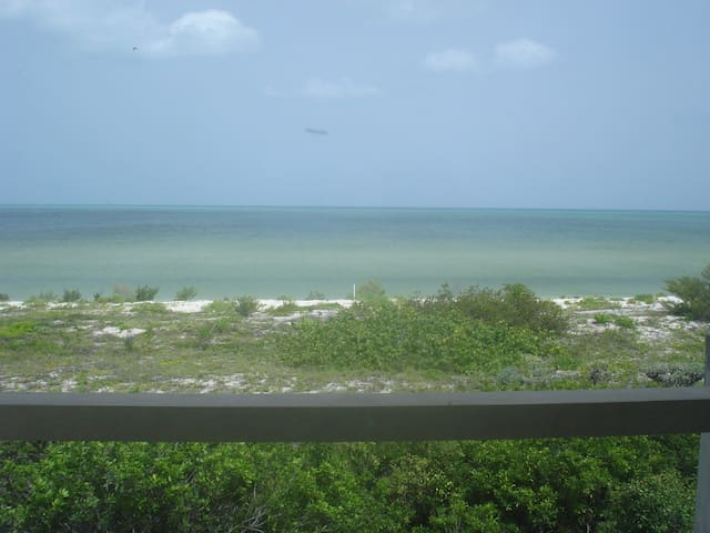 spectacular private beach
