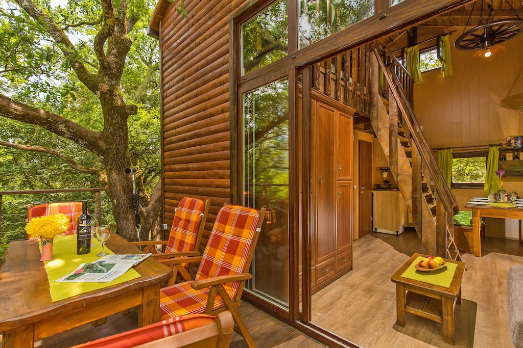 Treehouse at cadmos village treehouses for rent in for 8 living room tree houses powys