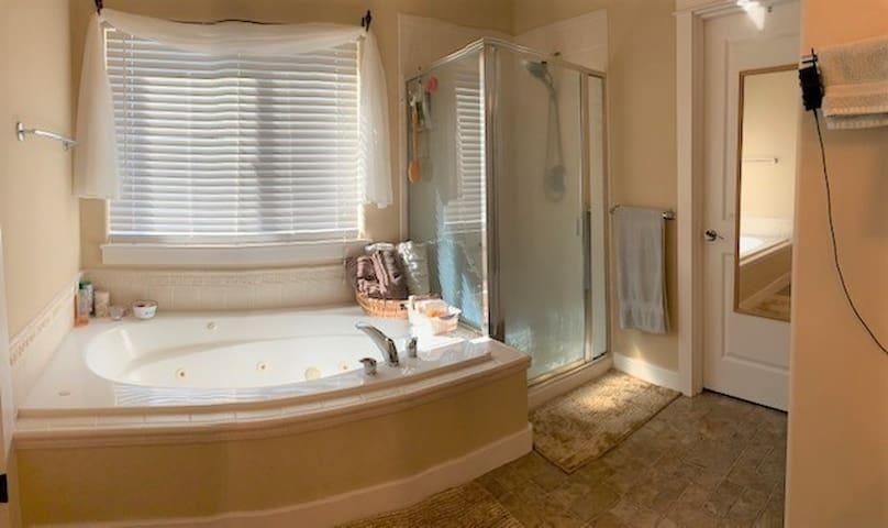 Master bath two person whirlpool tub