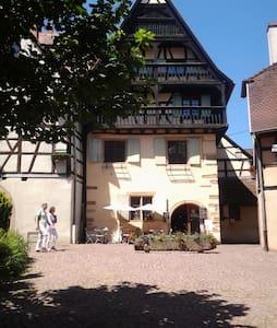 Gite le Chateau au  coeur historique d'Eguisheim - Eguisheim