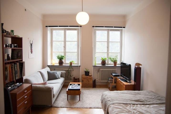Central lägenhet nära vattnet - Stockholm - Appartement