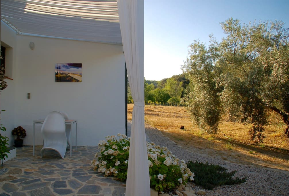 Your private terrace, amongst the olive groves. Pure nature!