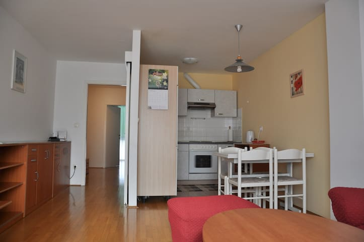 Top apartment - free parking - Ljubljana - Huoneisto