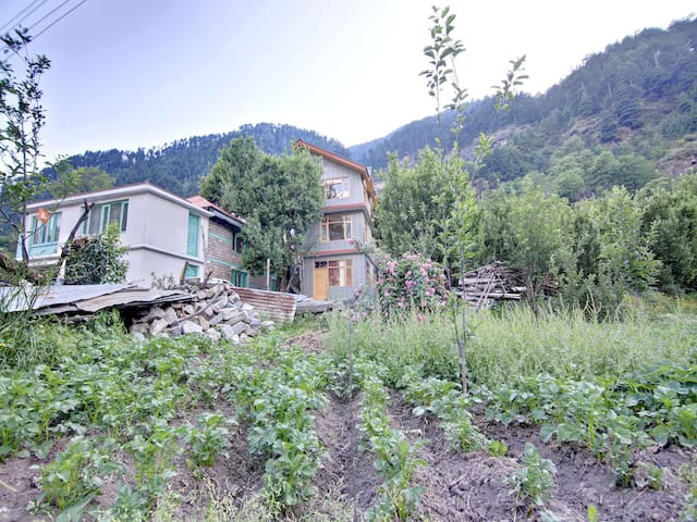 OYO - Early Bird Discount🐤 - Furnished 1RK Homestay in Manali