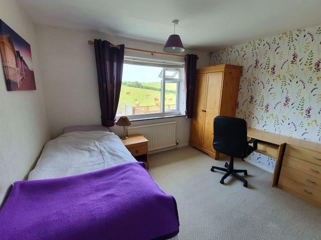 Bright, scenic room in spacious Brighton home