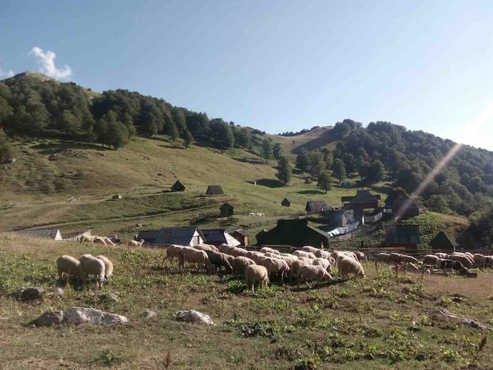 Eco village Goles - Cabin 3