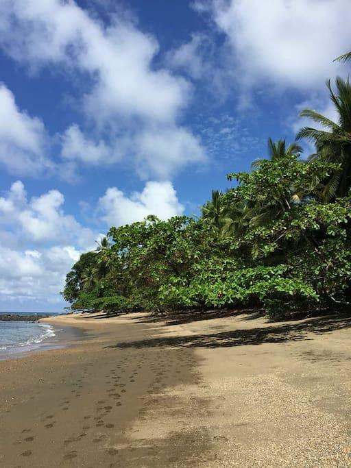 Playa Bahia Ballena