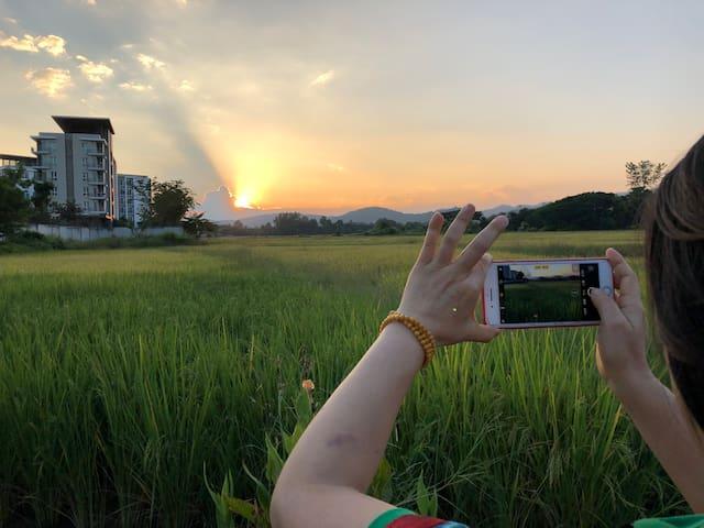 免费接机(3晚起)东南亚本土风情居家别墅 HO_MEtel
