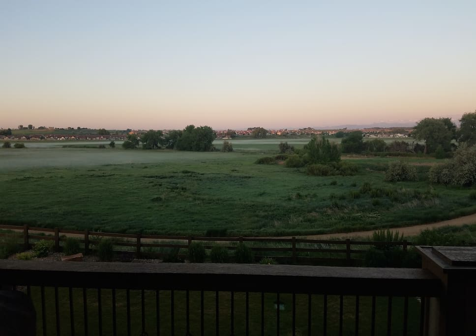 View from the deck - 50 acre open space and wildlife area.