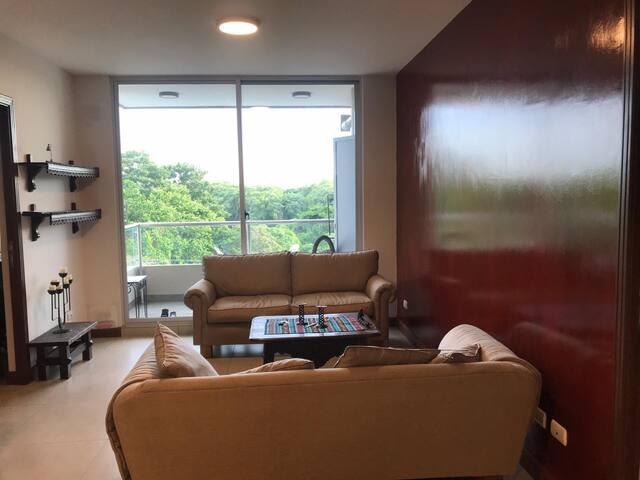 Sala de estar con dos sofás grandes y salida al balcon