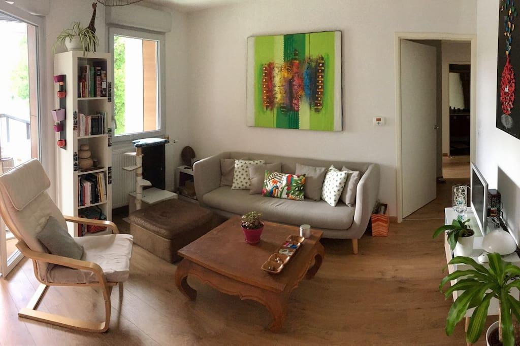 Salon et le couloir donnant accès au reste de l'appartement