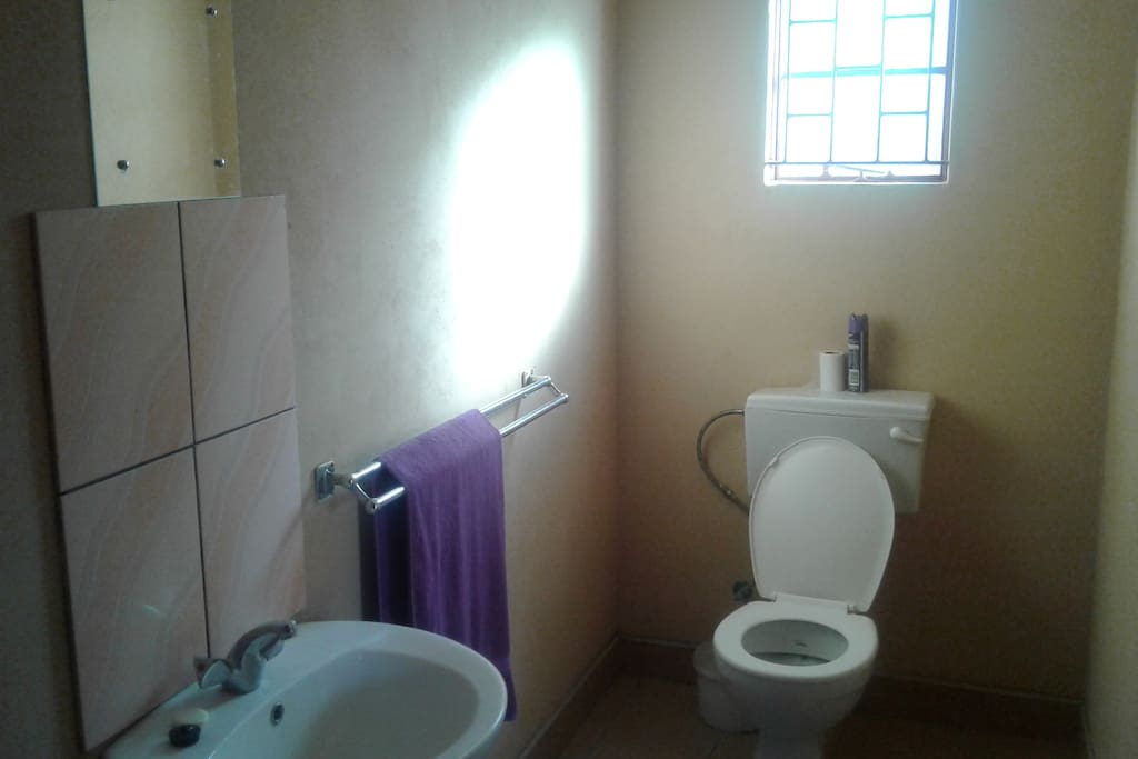 The toilet/bathroom