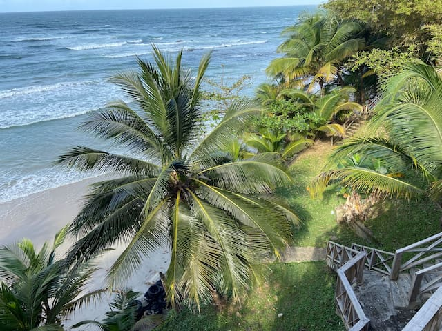 Beautiful Beachfront Property in Blanchissuesse