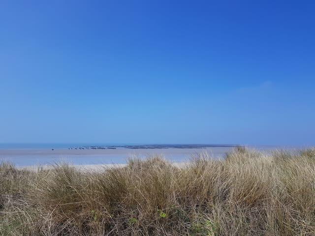 Bords de mer ,plage de sable
