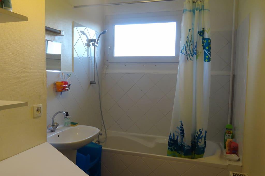 salle de bain avec machines à laver et sécher baignoire lavabo plan de travail repassage possible fer à repasser grand miroir