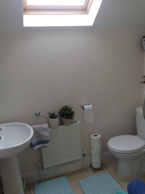 Upstairs toilet/shower