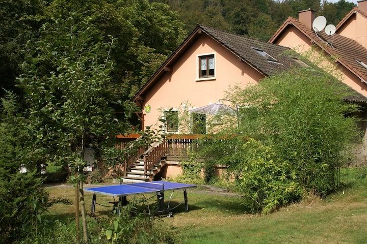 Espaciosa casa de vacaciones con jardín cerca del lago en Hanviller