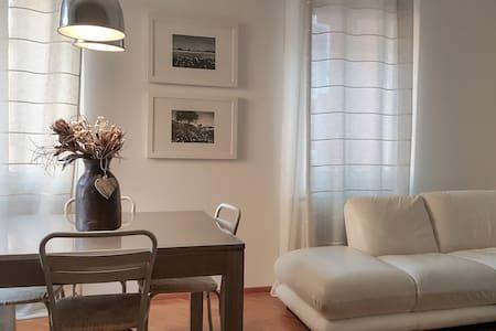 Bright flat in the hearth of Modena - Modena - 公寓