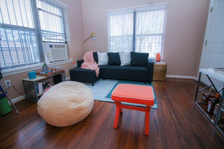 Entire Apartment Near Downtown Houston - Houston - Apartment