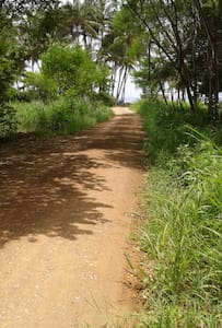 Room for Rent in Playa Junquillal, Guanacaste - Playa Junquillal - House