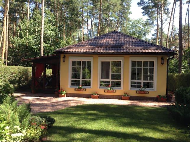 Дом летом
