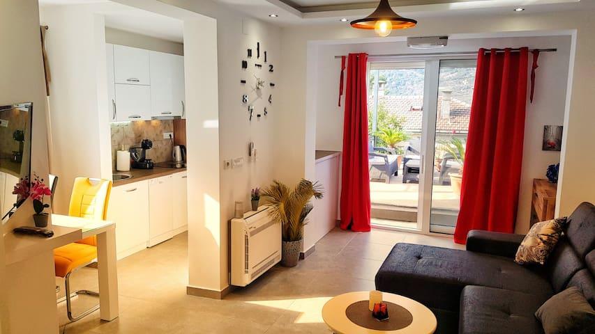 Apartment Nancy-Elegance