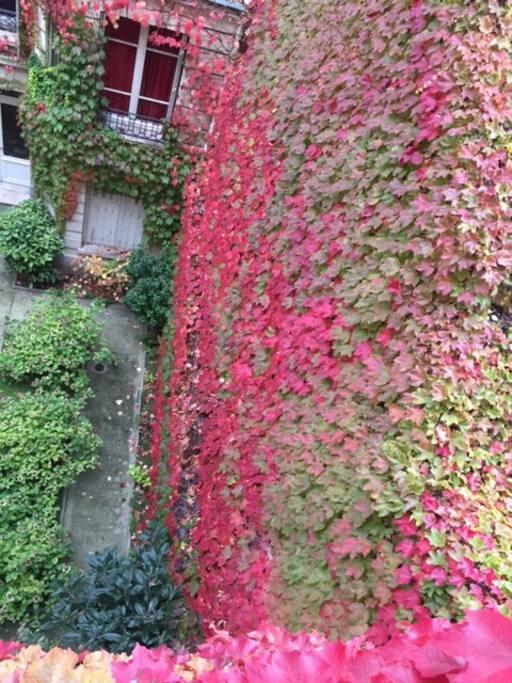Cour intérieur vue du balcon en automne.