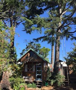 Berkeley Backyard Tiny Home - Berkeley - Blockhütte