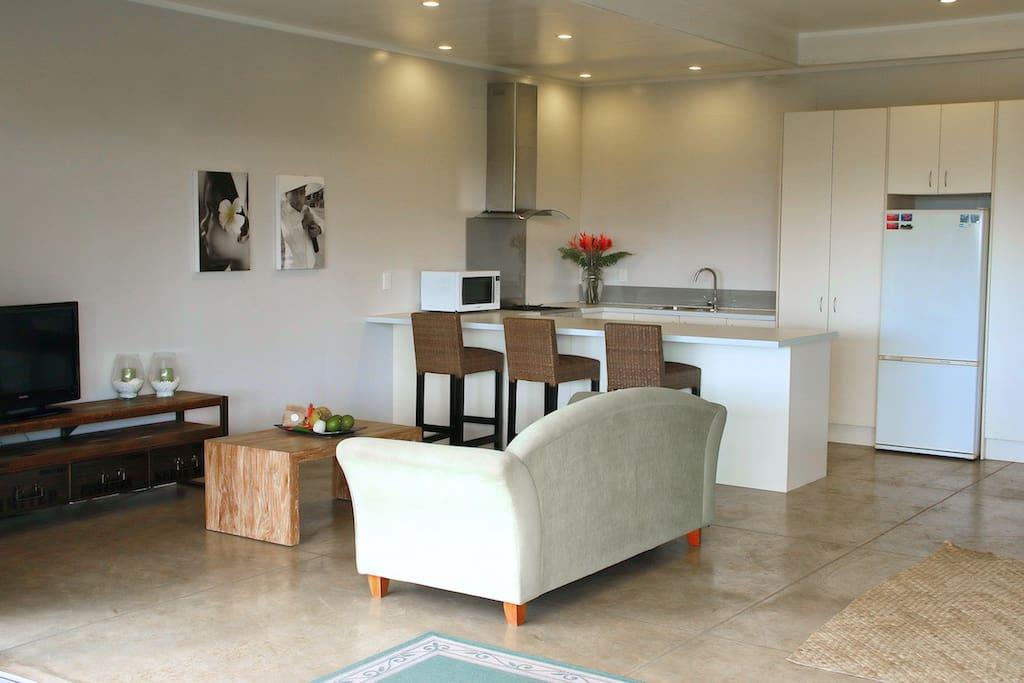 Studio lounge and kitchen