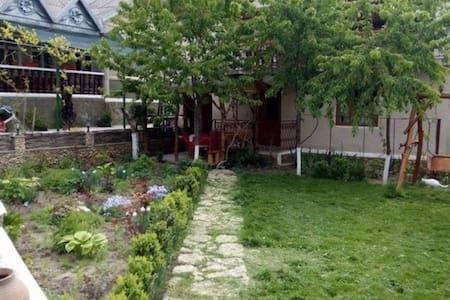 """"""" Casa de sub Stinca""""-Guest House - Butuceny"""