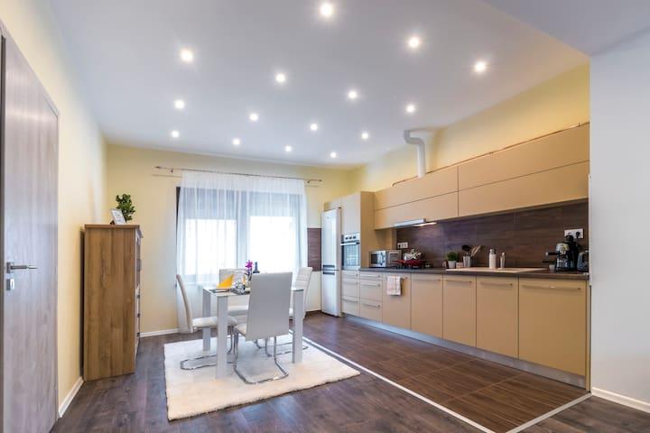 Spotlight Deluxe Apartment Szeged