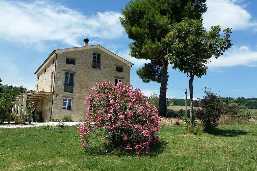 Our home in the le Marche countryside