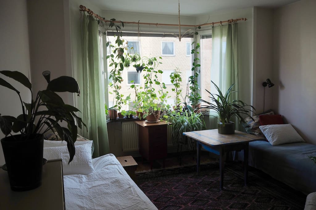 Rent An Apartment In Uppsala For A Year