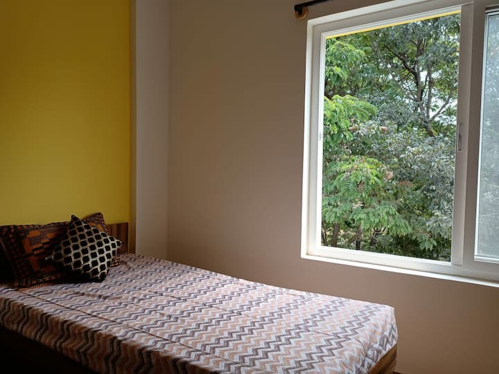 Cozy room surrounded by forestry at Whitefield
