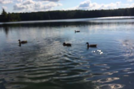 Havre de paix sur le Lac - Saint-Alphonse-Rodriguez - Lomamökki