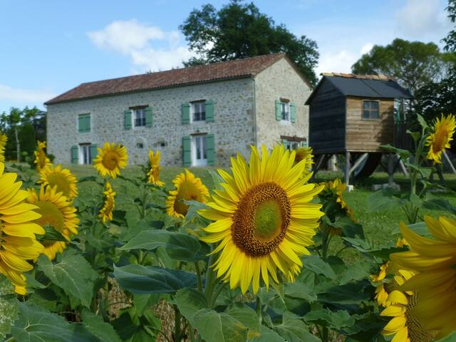 "Gites Saint-Denis ""Tournesol"" au NOMDIEU - Nomdieu - Natuur/eco-lodge"