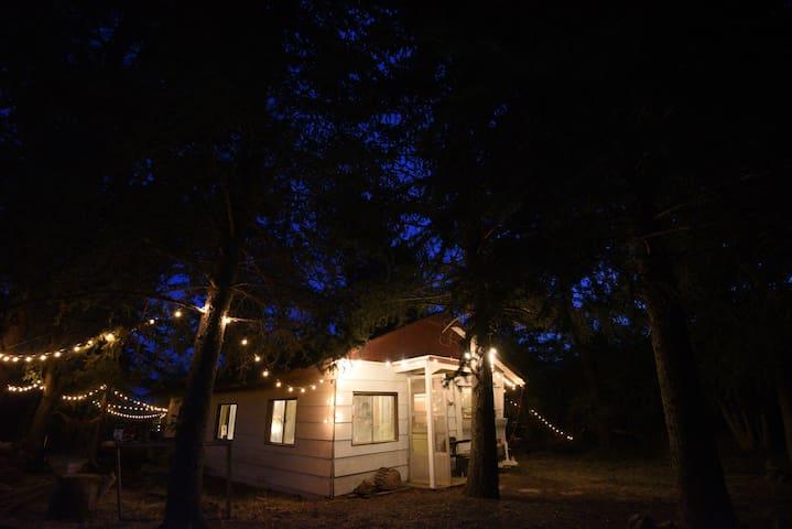 Hi-Lo Forest bungalow //\\ Eden's hidden gem. - Eden