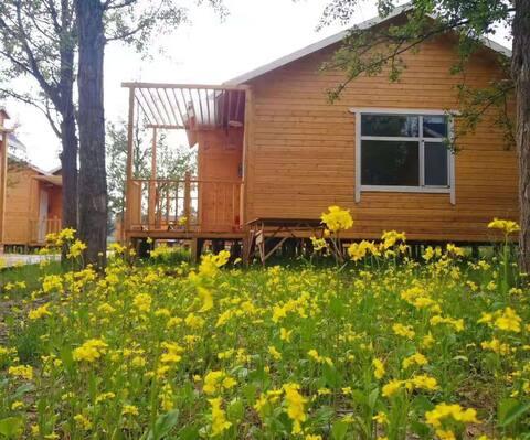 (优惠房源)茶卡盐湖后花园–星梦驼园豪华木屋标间