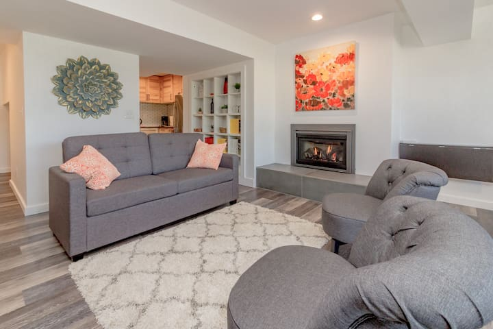 New gas fire place with cozy furniture and queen size sofa sleeper
